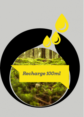 Votre recharge 100 ml de souvenir parfumé Promenons-nous dans les Bois